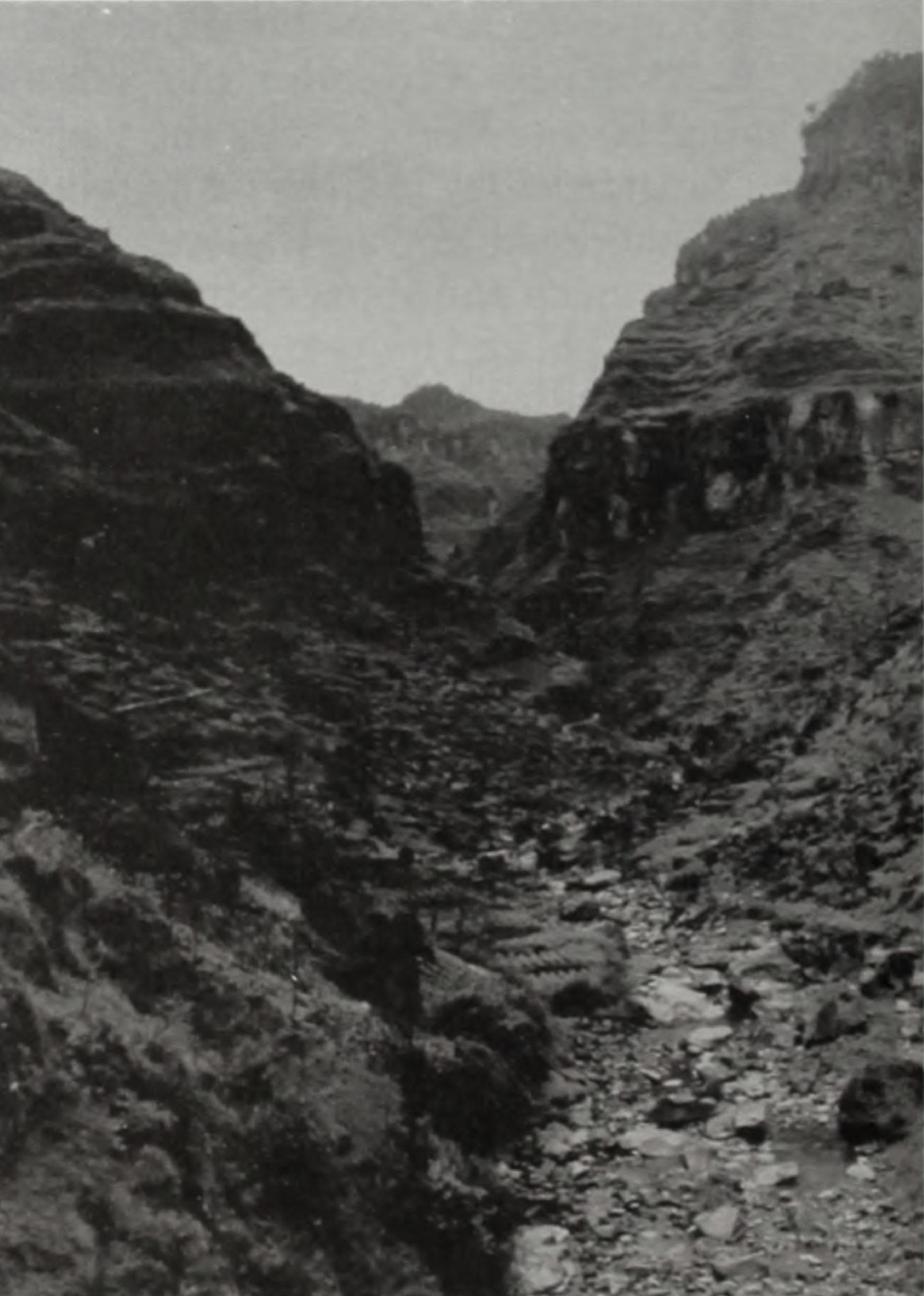 Blac-and-white landscape image of landscape