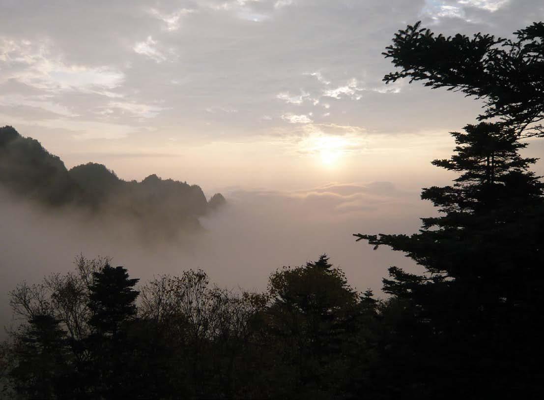 Photograph of misty sunrise