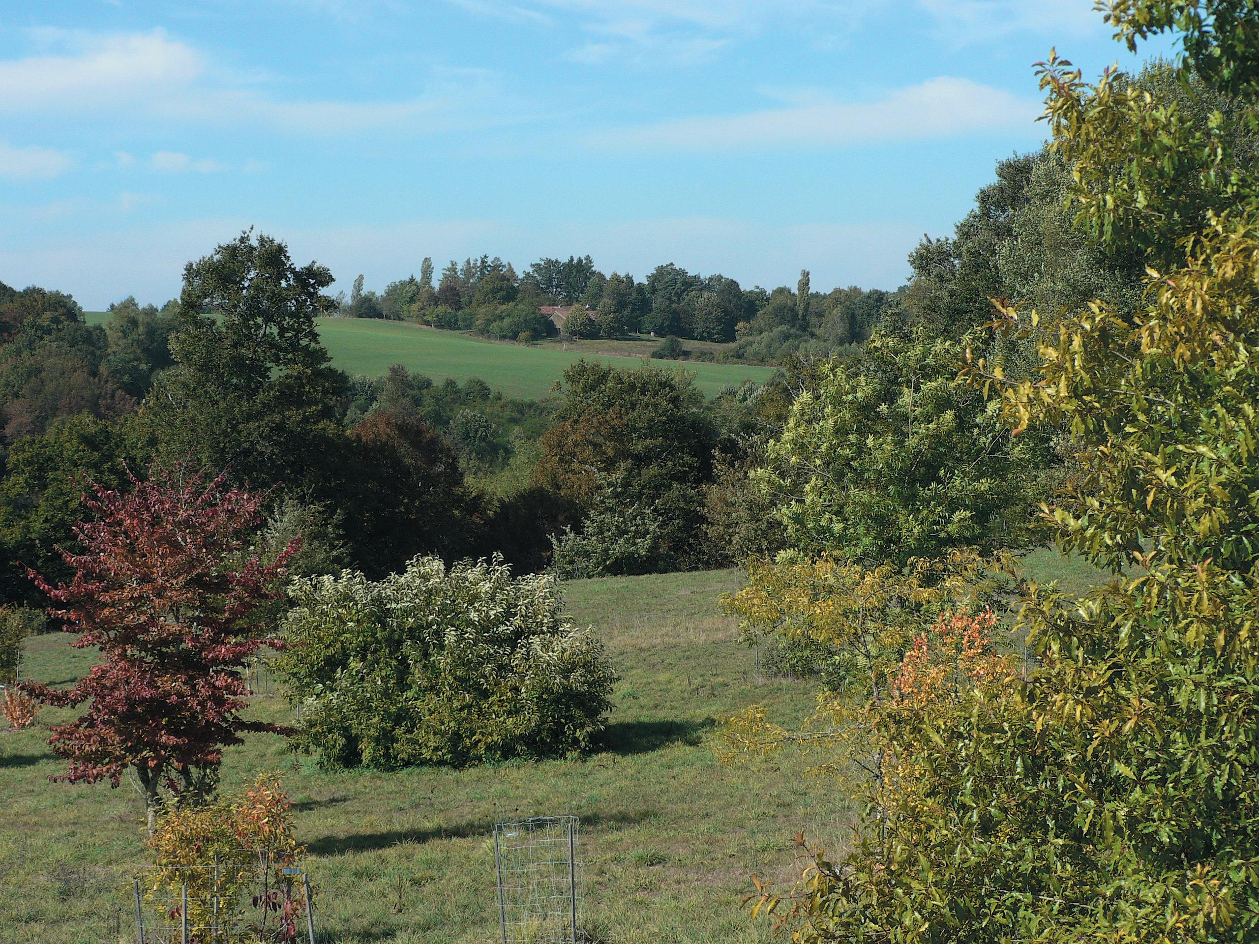 A color photo of the Arboretum des Pouyouleix.