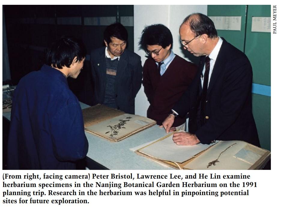 Lin-Lee-Bristol-Nanjing-Botanical-Garden