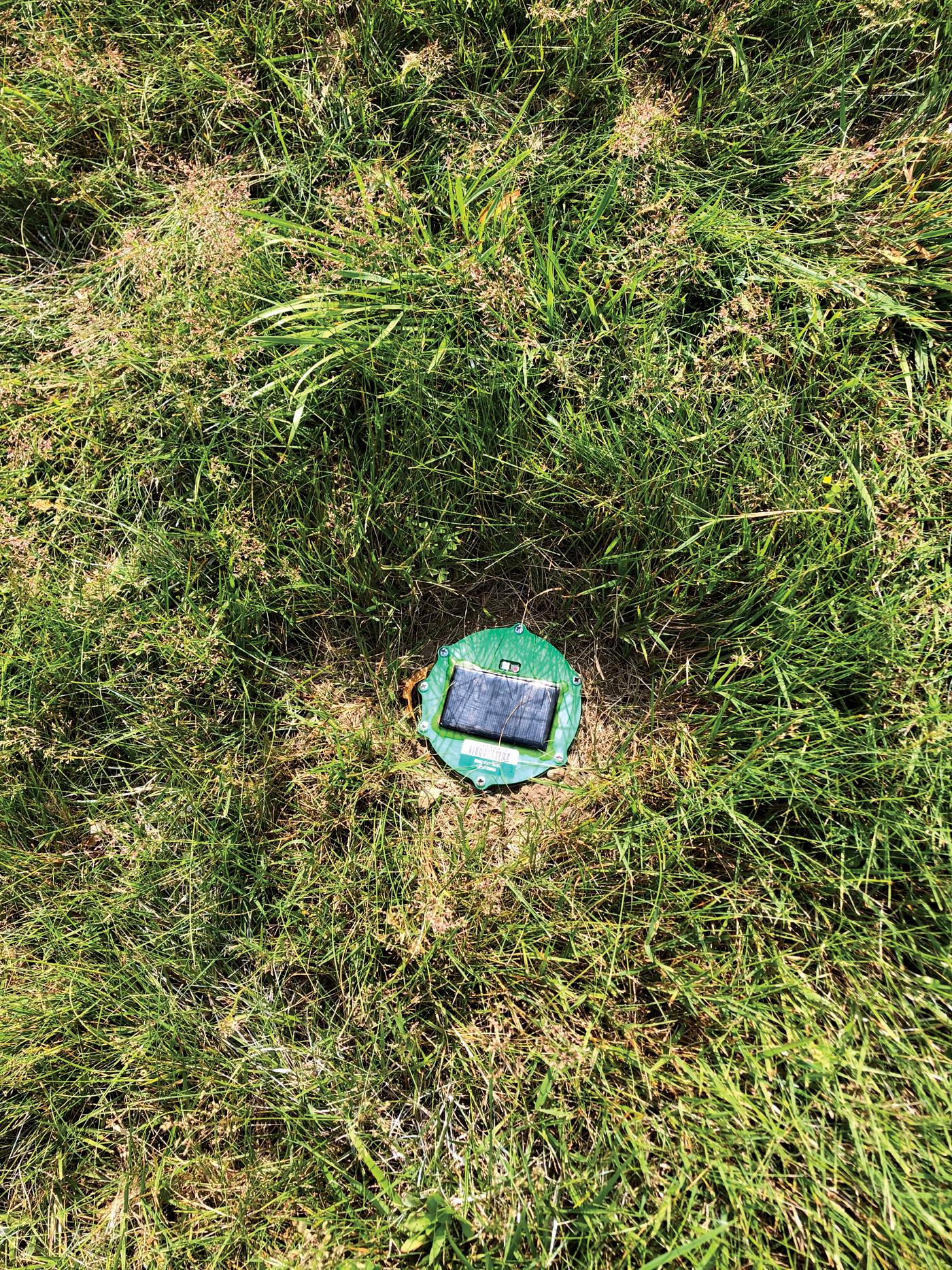 Photo of round sensor stuck into turf