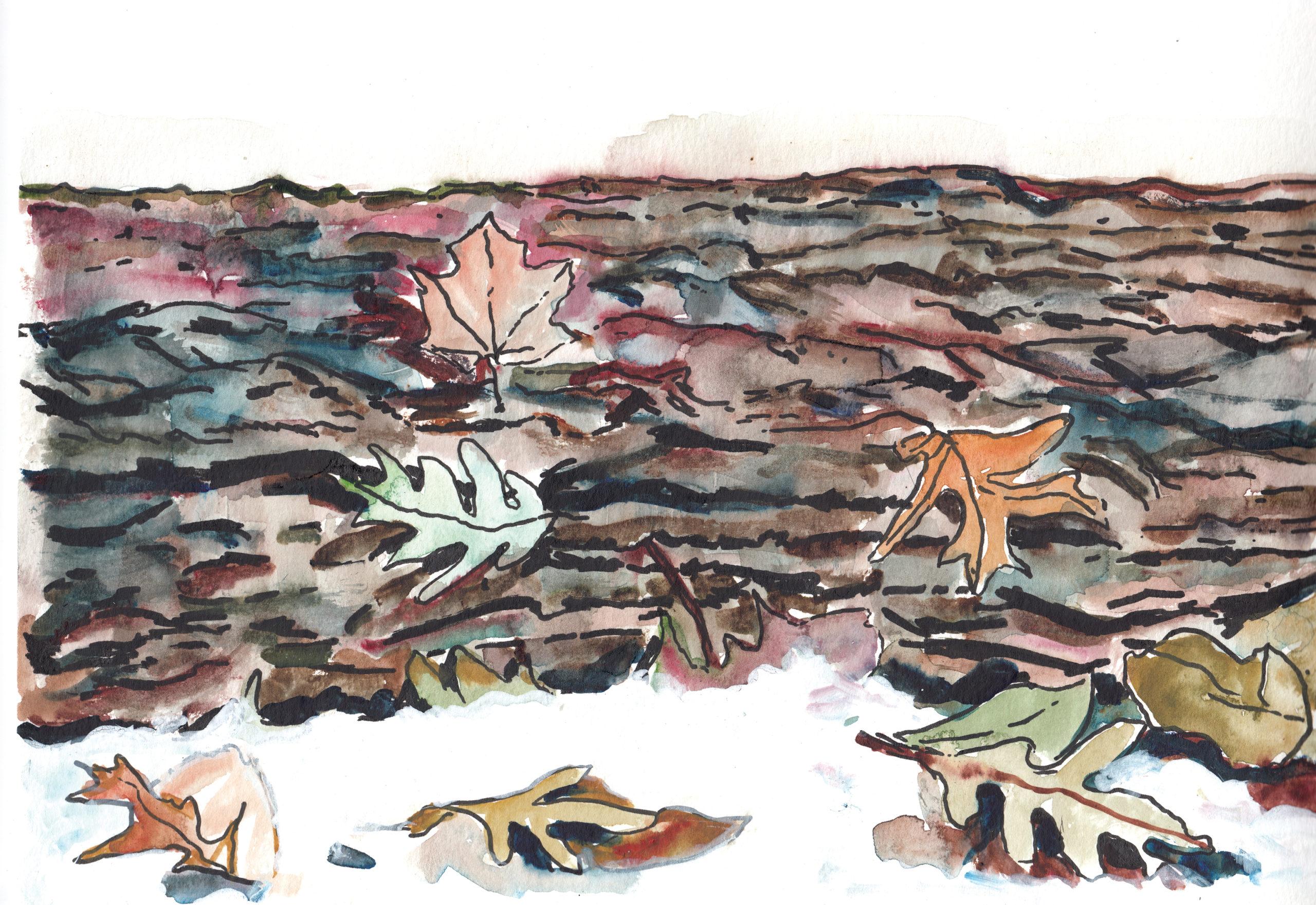 Watercolor of leaves on log