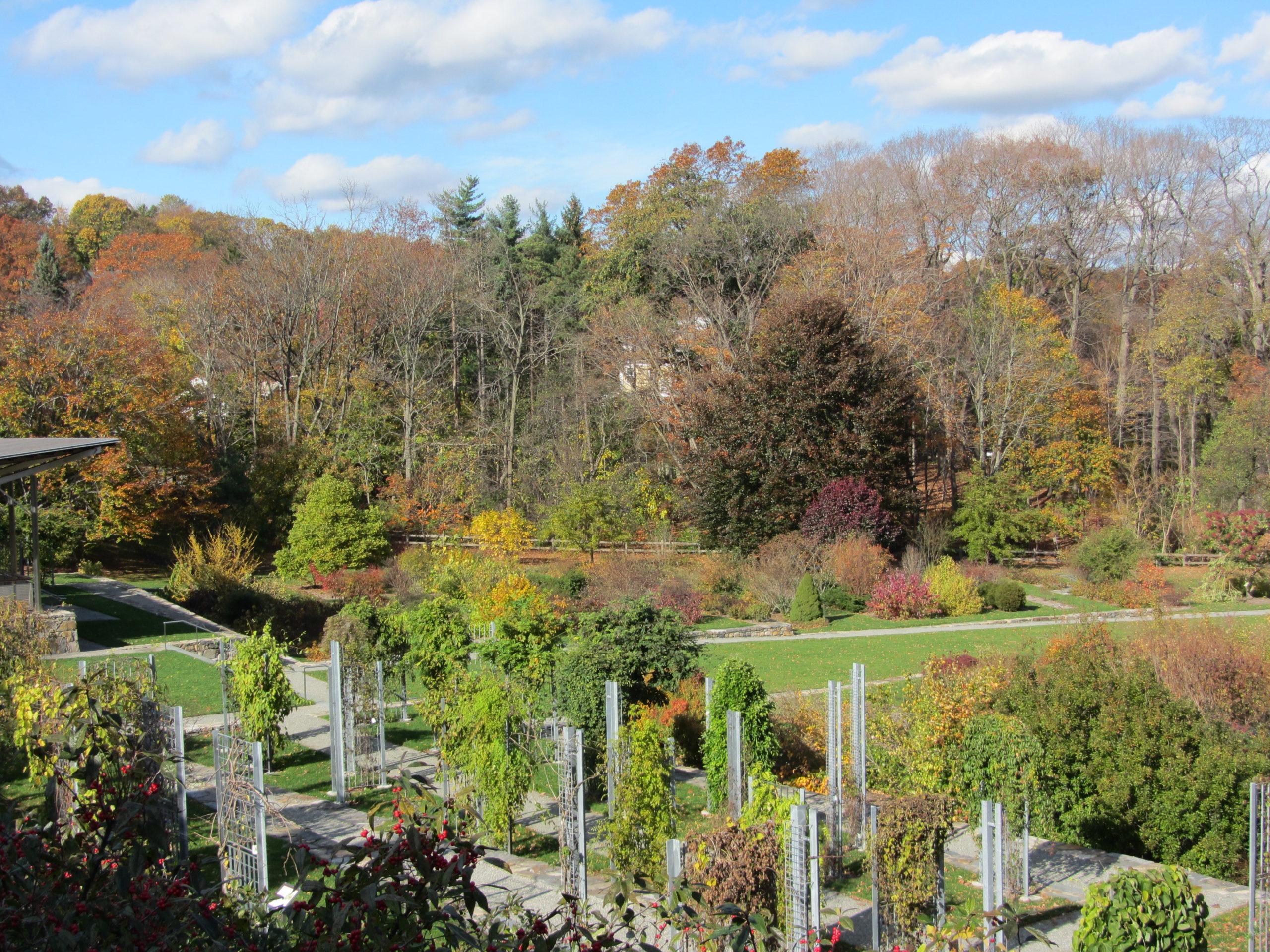 Leventritt Garden in autumn