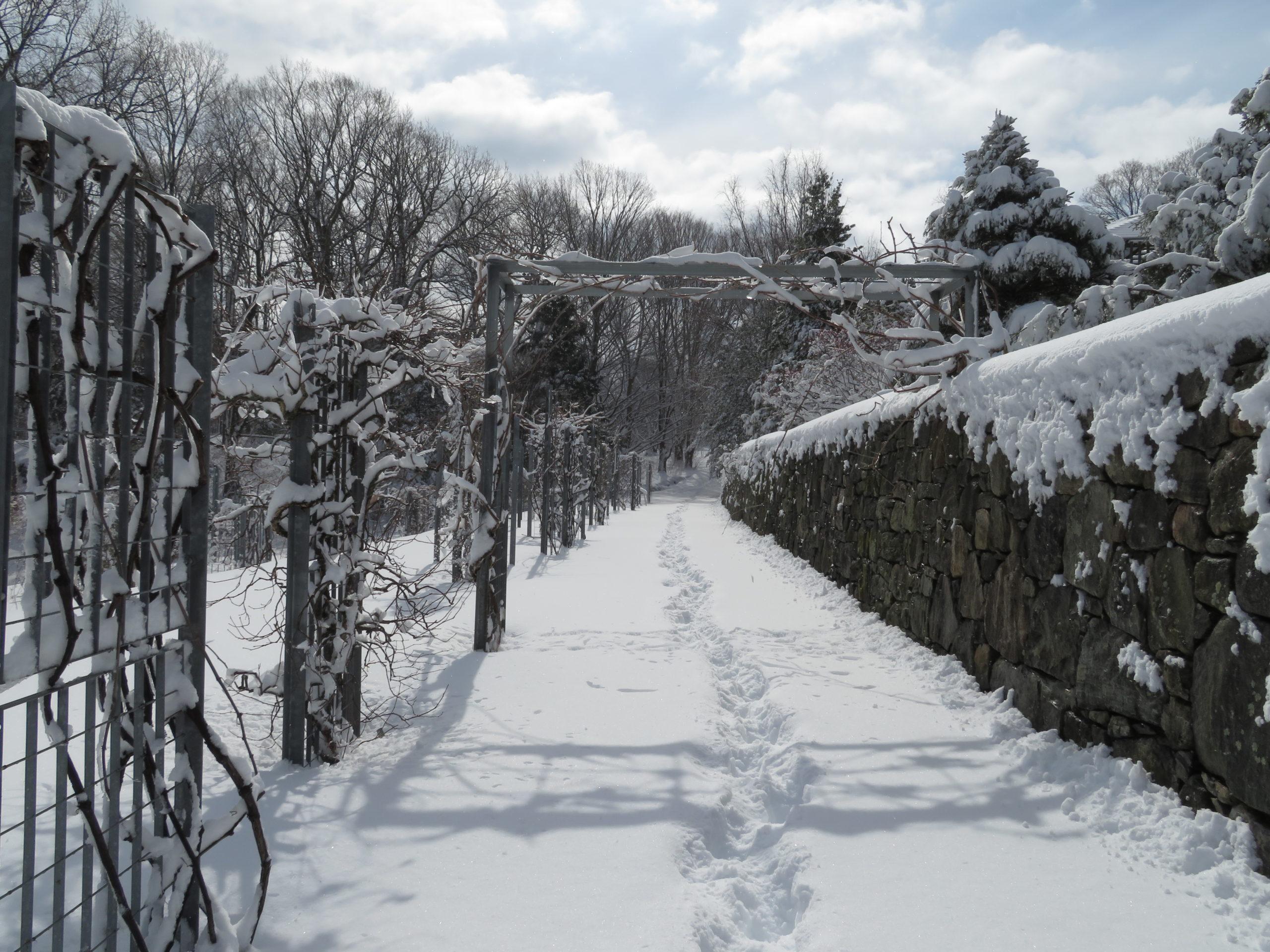 Fresh snow blankets the Leventritt Garden after a winter storm.