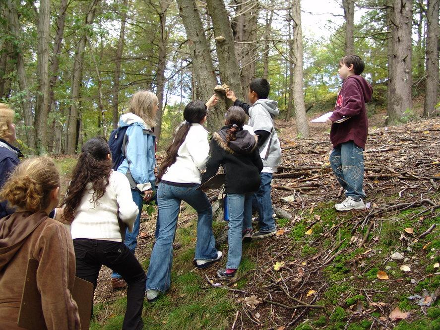 Volunteers help children explore the natural world. Photographs by Jon Hetman, Nancy Sableski, Kevin Schofield, and Julie Warsowe.