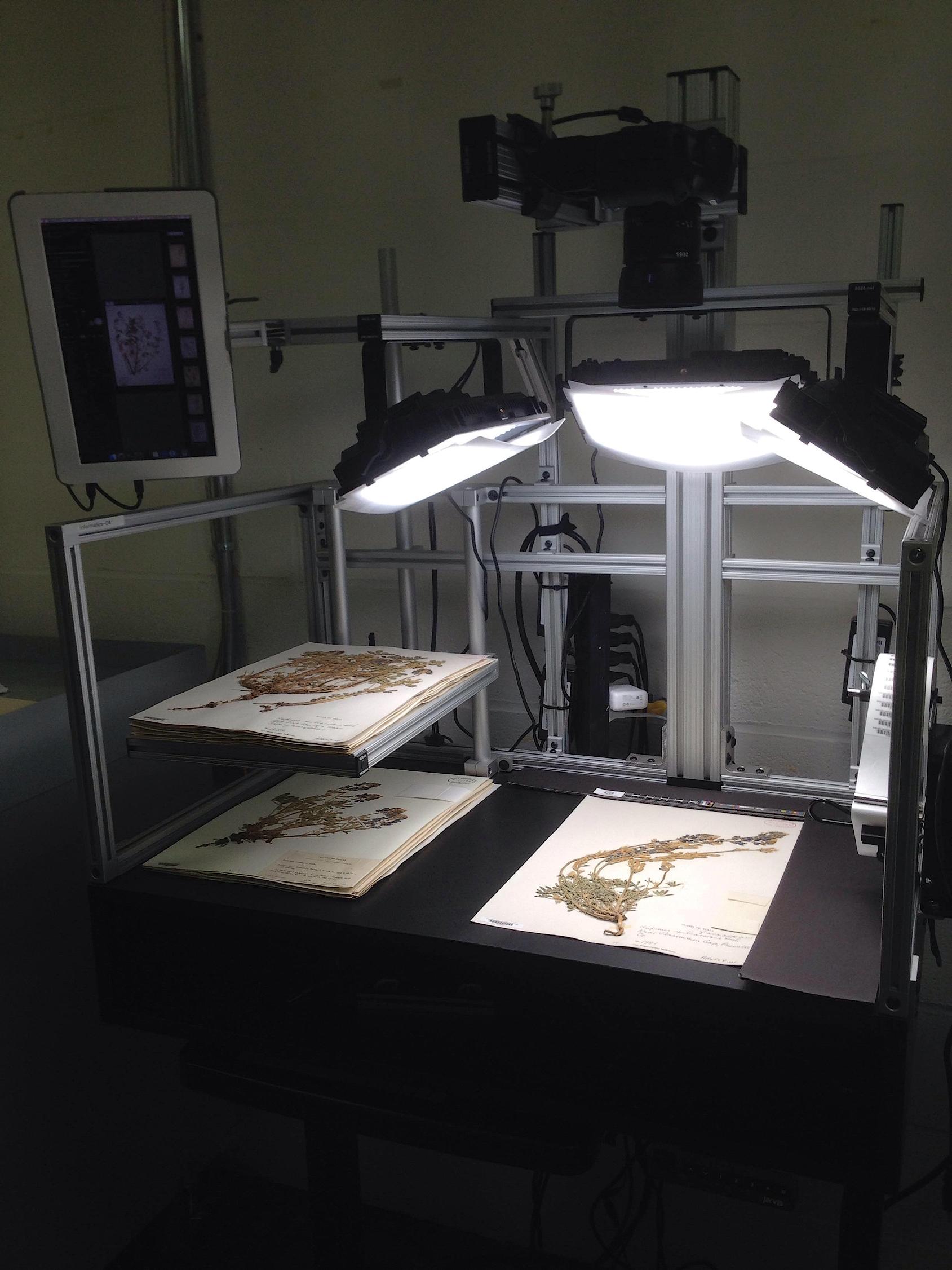 Digitization station at Harvard University Herbaria