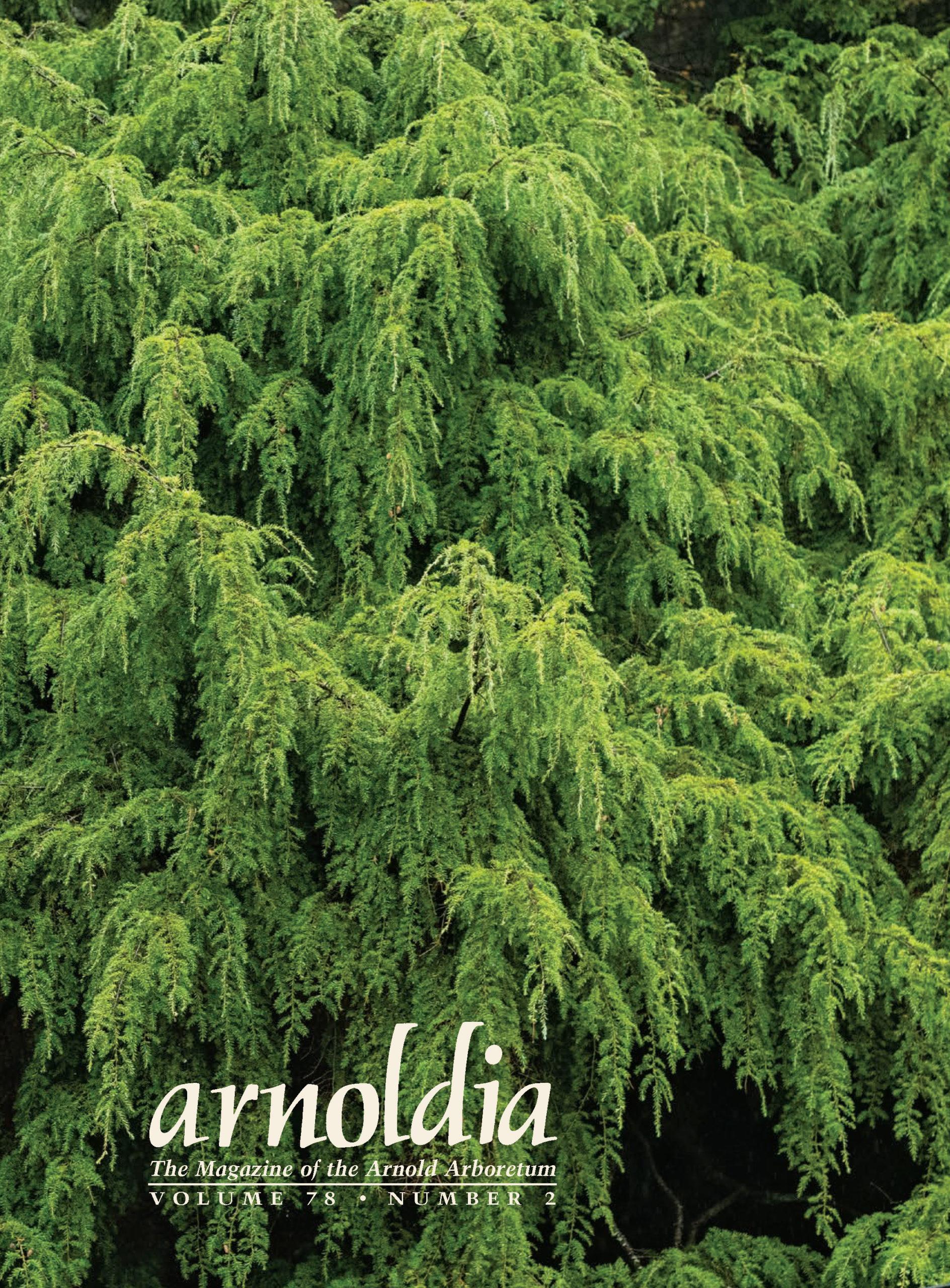 Cover of Arnoldia 78-2