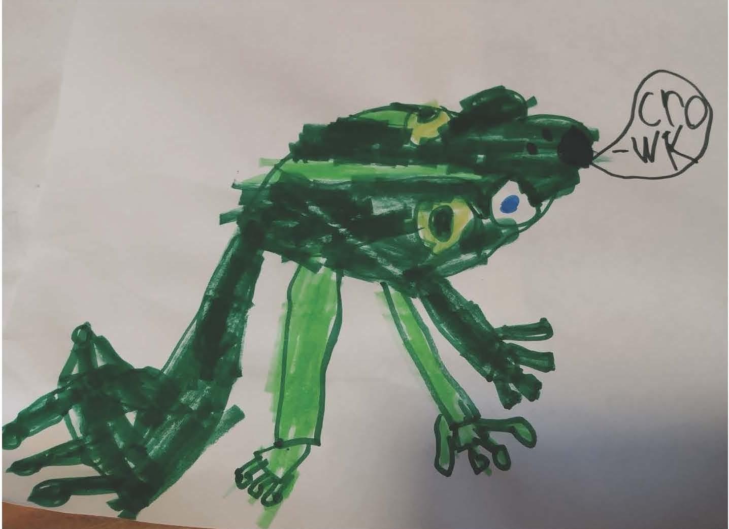 child drawn frog