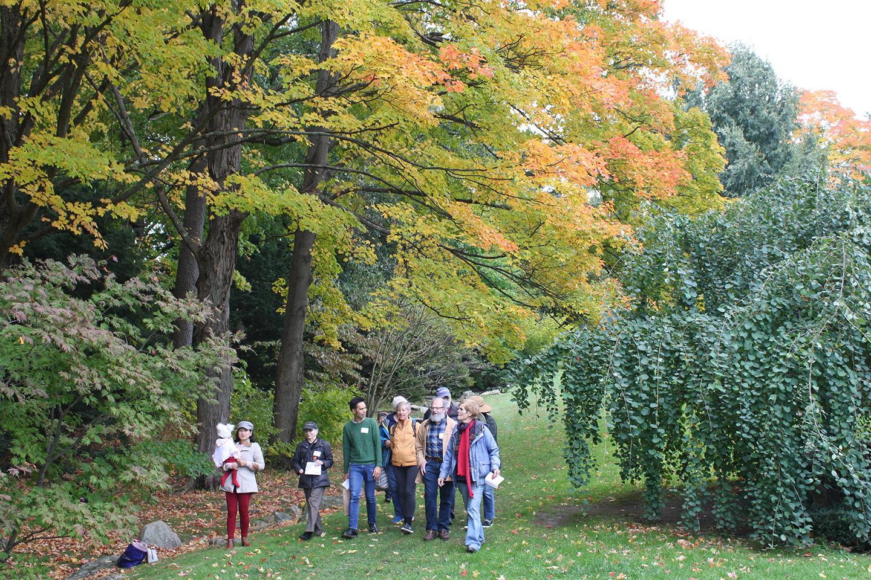 Members Tour Day in the Leventritt Garden